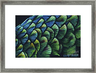 Iridescence Framed Print by Wendy Galletta