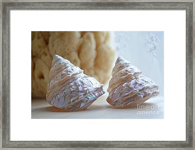 Framed Print featuring the photograph Iridescent by Aiolos Greek Collections
