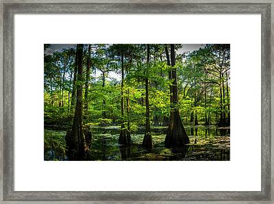 Iridium Paradise Framed Print by Marvin Spates