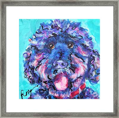 Irie Labradoodle Framed Print