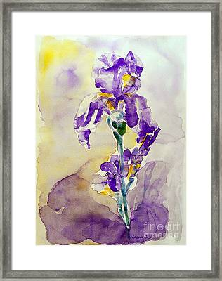 Framed Print featuring the painting Iris 2 by Jasna Dragun