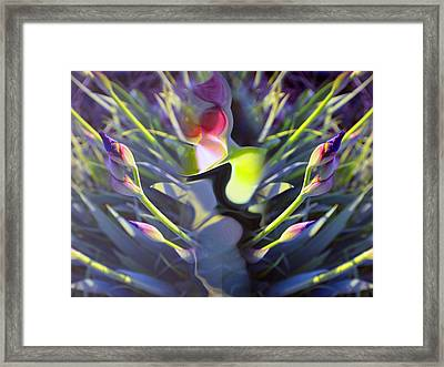 Iris Abstract Framed Print
