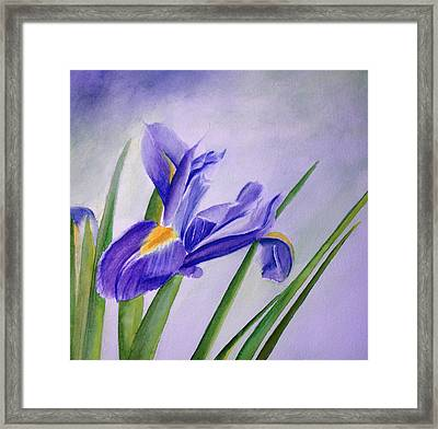 Framed Print featuring the painting Iris by Allison Ashton