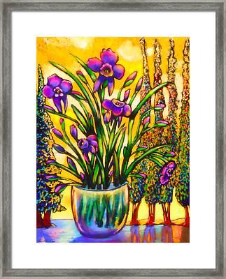 Iris Framed Print by Angelina Marino