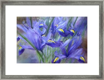 Iris Bouquet Framed Print by Carol Cavalaris