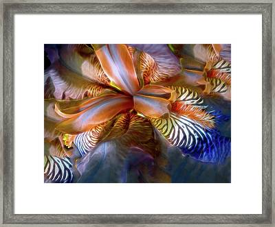 Framed Print featuring the mixed media Iris Dream by Lynda Lehmann