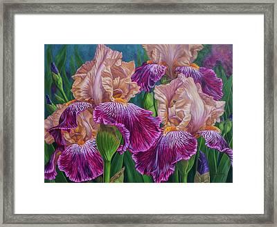 Iris Garden 2 Framed Print