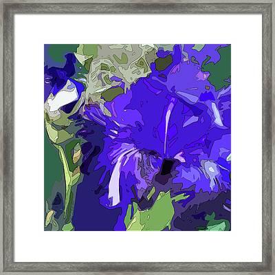 Iris Impressions Framed Print