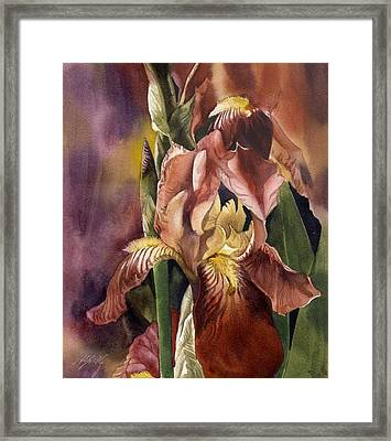 Iris In Red Framed Print by Alfred Ng