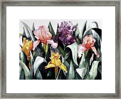 Iris Integration Framed Print by Leah Wiedemer