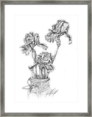 Iris Framed Print by Jennifer Campbell Brewer