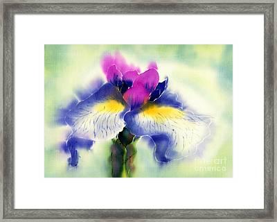 Iris Kaempheri Nikko Framed Print
