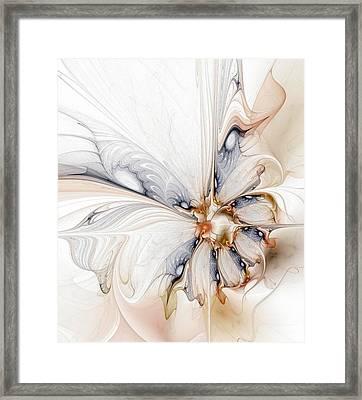 Iris Framed Print by Amanda Moore