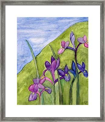 Iris Meadow Framed Print by Margie  Byrne