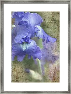 Iris Memories Framed Print by Angie Vogel