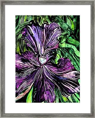 Iris Framed Print by Mindy Newman