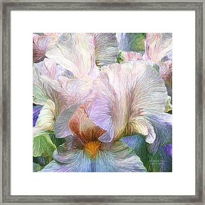 Iris Moods 3 Framed Print