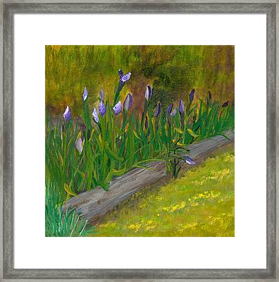 Iris Procession Framed Print by Wanda Pepin