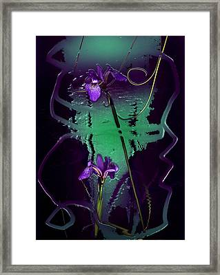 Iris Reflections Framed Print by Algis Kemezys