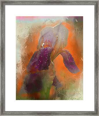 Framed Print featuring the digital art Iris Resubmit by Jeff Burgess