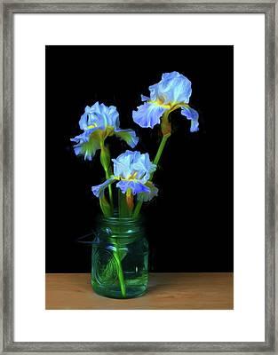 Iris - Simply Framed Print by Nikolyn McDonald