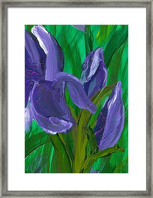 Iris Up Close And Personal Framed Print by Wanda Pepin