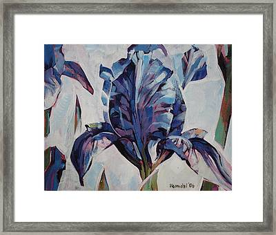 Iris Winter Framed Print by Tim  Heimdal