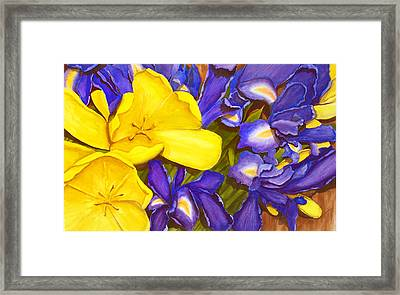 Iris Withtulip Framed Print by Robert Thomaston