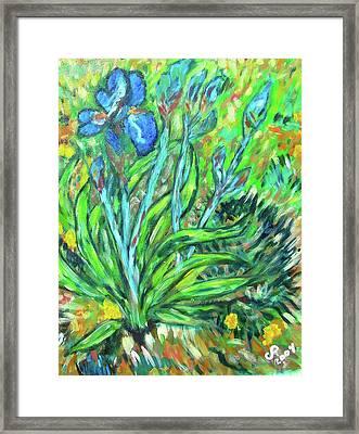 Irises Ala Van Gogh Framed Print by Carolyn Donnell