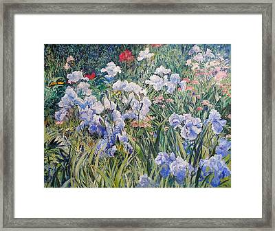 Irises Framed Print by Andrey Soldatenko