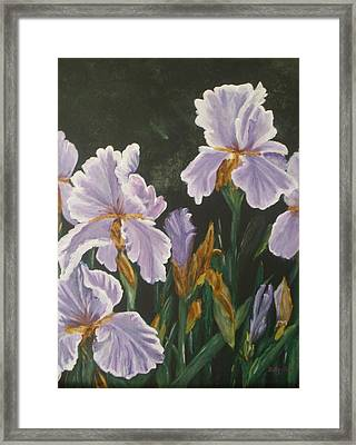 Framed Print featuring the painting Irises by Betty-Anne McDonald