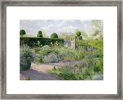 Irises In The Herb Garden Framed Print by Timothy Easton