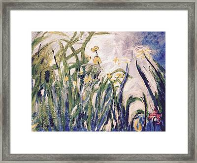 Irises Revisited Framed Print