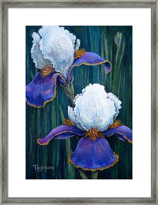 Irises Framed Print by Tanja Ware