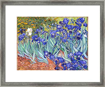 Framed Print featuring the painting Irises by Van Gogh