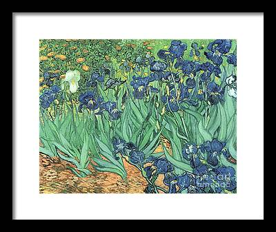 Gardens Framed Prints