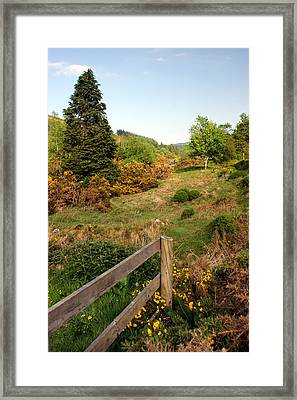 Irish Countryside Framed Print by Michael  Cryer