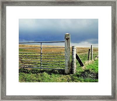 Irish Field Framed Print