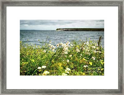 Irish Flower Impression Framed Print by Juergen Klust