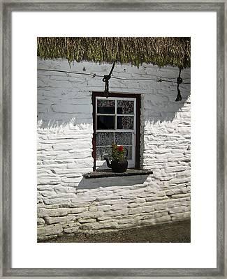 Irish Kettle Of Geraniums County Cork Ireland Framed Print by Teresa Mucha