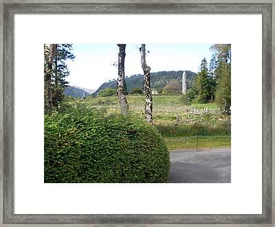 Irish Ruins Framed Print by Siobhan Yost