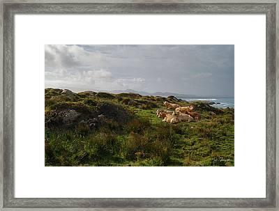 Irish Rustic Framed Print by Joe Bonita