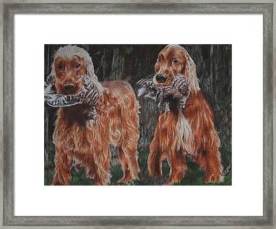 Irish Setters Framed Print by Darcie Duranceau