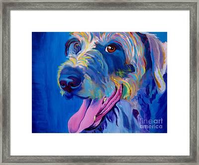 Irish Terrier - Lizzy Framed Print