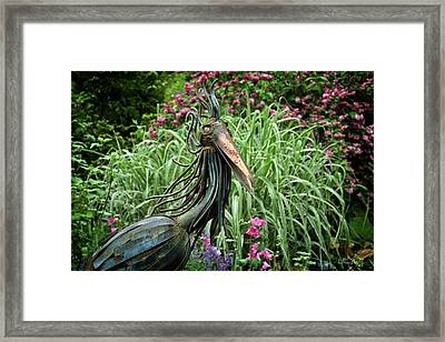 Iron Bird Framed Print