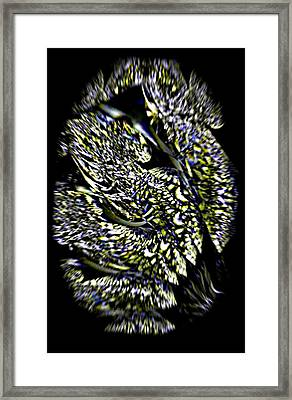 Iron Butterfly Wing In Flight Framed Print by Rebecca Phillips