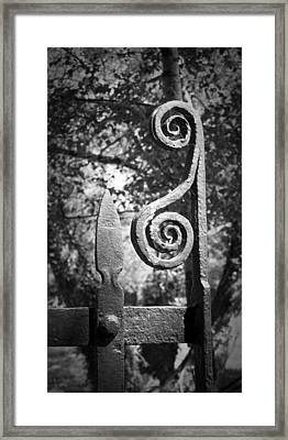 Iron Gate Detail County Clare Ireland Framed Print by Teresa Mucha