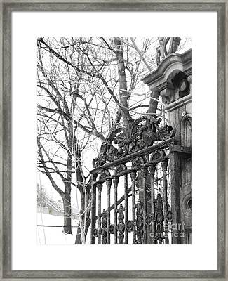 Iron Gate Framed Print by Reb Frost