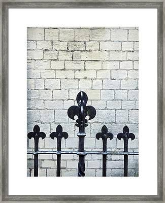 Iron Railings Detail  Framed Print