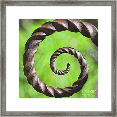 Iron Spiral Framed Print